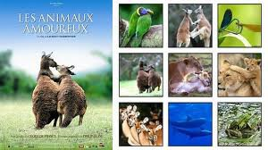 document d'animaux