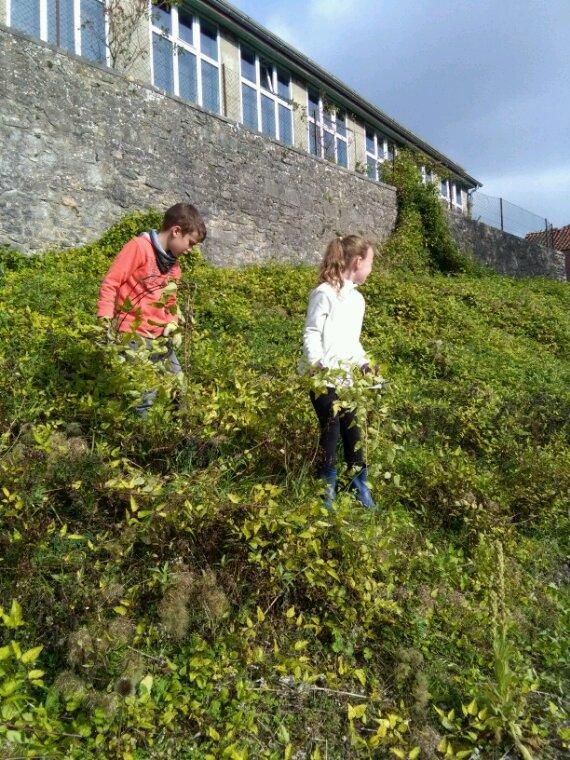 En avant les petits jardiniers