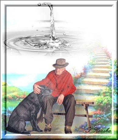 Jolie histoire,Un homme et son chien