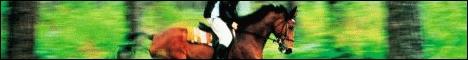 www.chevaltop.fr