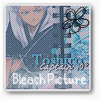 Bleach-Picture
