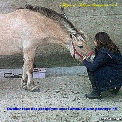 L'équitation :)