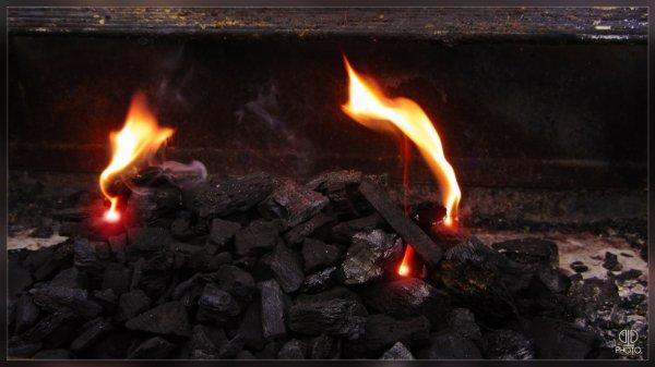 Flame & Coal