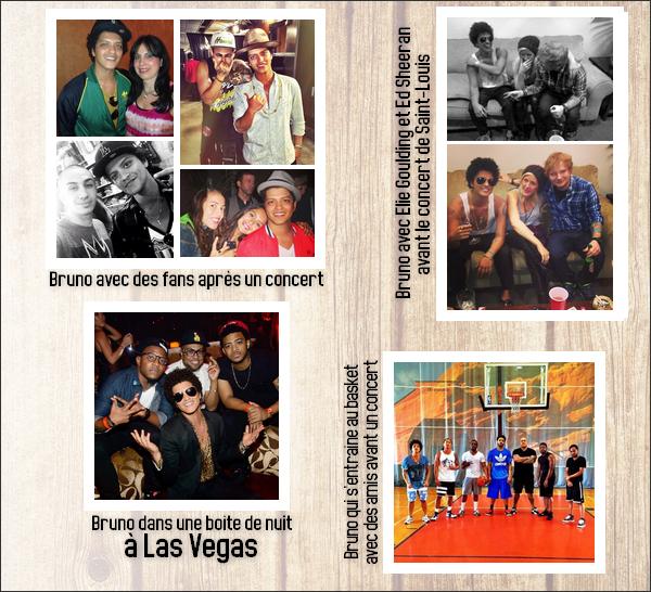 10/08/13 - Retour sur le blog, toutes les infos sur Bruno