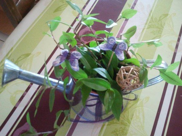 Arrosoir de plante