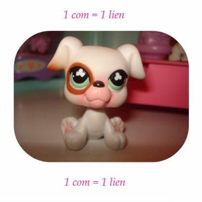 1 com = 1 lien