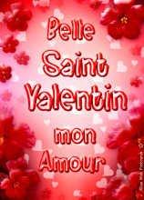 bne et heureuz st valentin mon coeur
