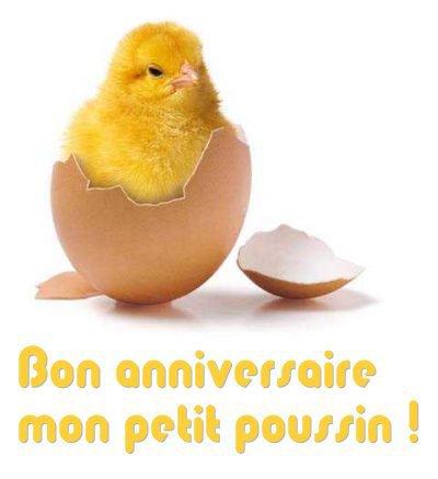 Top MON POUSSIN - mon canard GO74