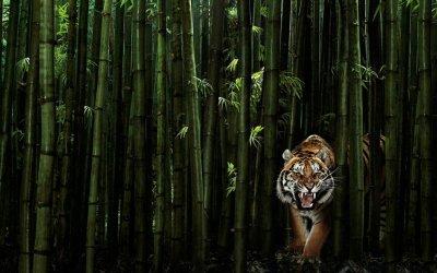 un magnifique tigre