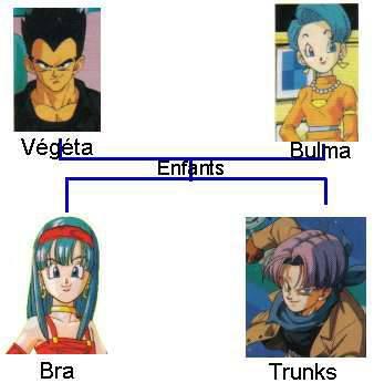quelque personnages du mangas DBZ