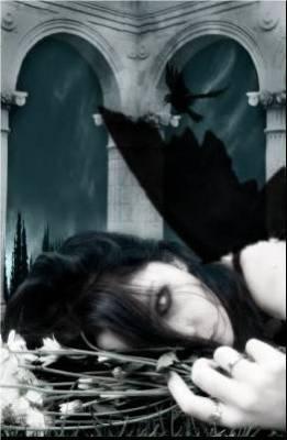 Les souffrances de mon passer me brule tellement des secret enfouis dans mon coeur ne peuvent bruler car il sont inscrit dans ma peau dans ma chair dans mon esprit dans mon ame  suis je la seul a souffrir tellement dans se monde