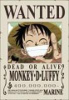 Monkey D Luffy (le crétin)