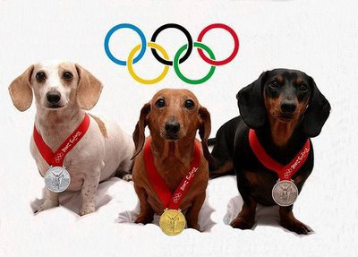 Dogs: In 2012 Olympic London