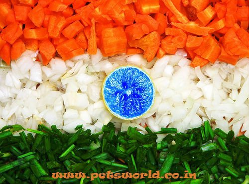 15th August : Happy Indepence Day to all whom I Extremely Love