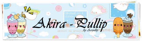 ♥ Akira Pullip ♥