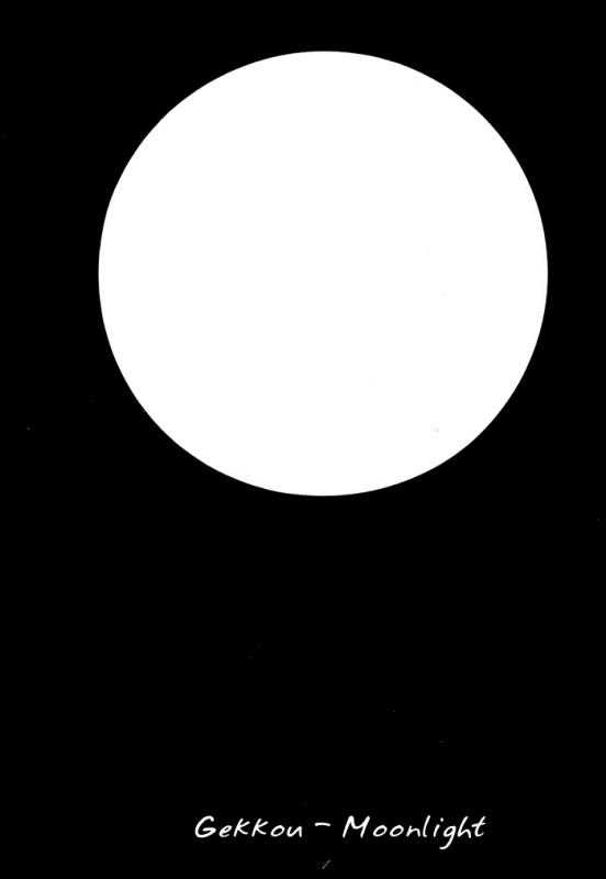 Gekkoh 03