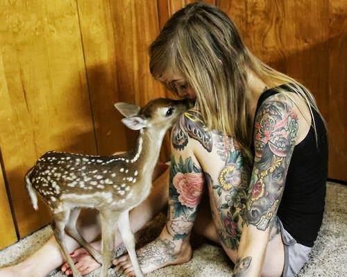 tatouages animaux