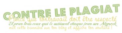 Bienvenue sur mon blog =)