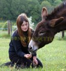 Photo de donkey-nigette