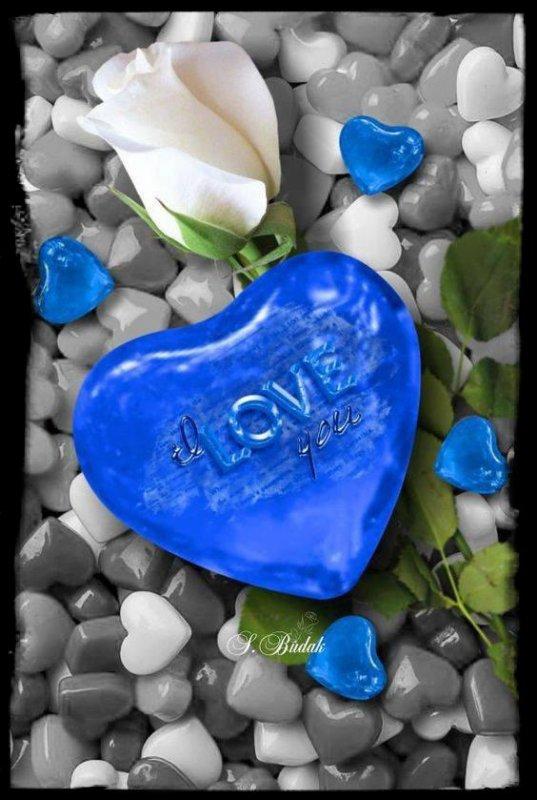 Les Mots Bleus......!