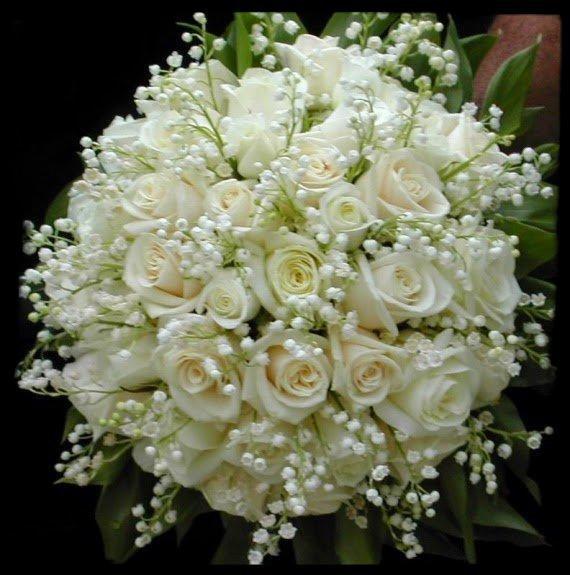 Bon 1er Mai Bisous  a vous mes ami(e)s .......