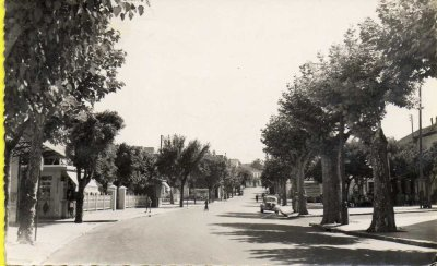 BIRKHADEM - La rue principale...!