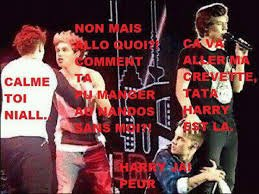 mdr niallou