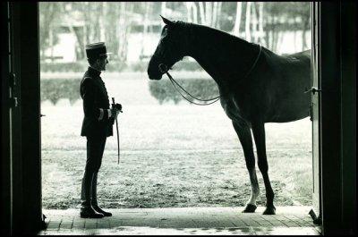 L'équitation plus qu'une passion !
