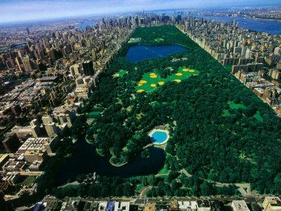 le central park de new york