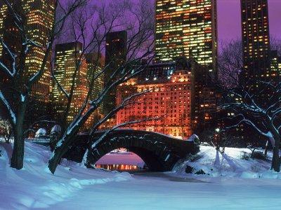le central park recouvert par la neige