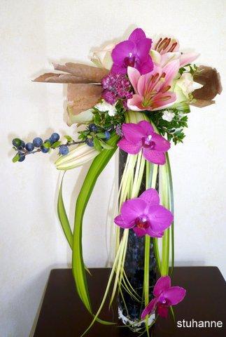 orchidées et prunelles