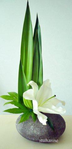 vert et blanc