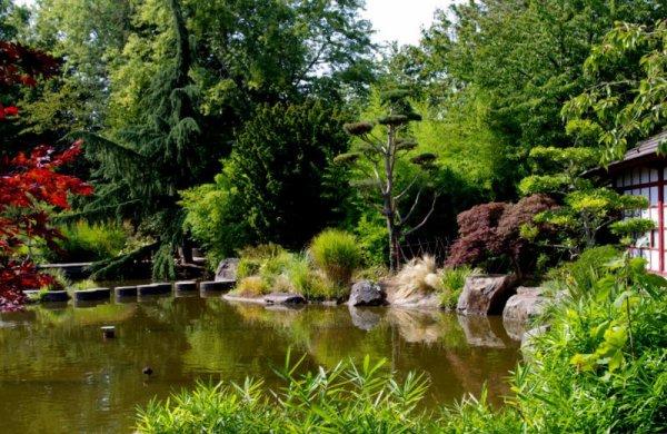 une petite vue du jardin japonais sur l'ile de Versailles à NANTES