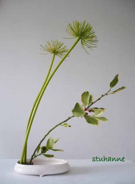 "hana mai "" les fleurs qui dansent"""