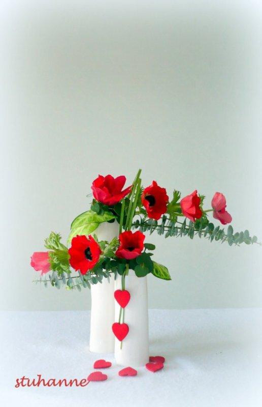 en langage des fleurs, anémone signifie attente, abandon.......