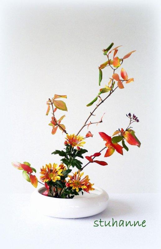 ikébana d'automne
