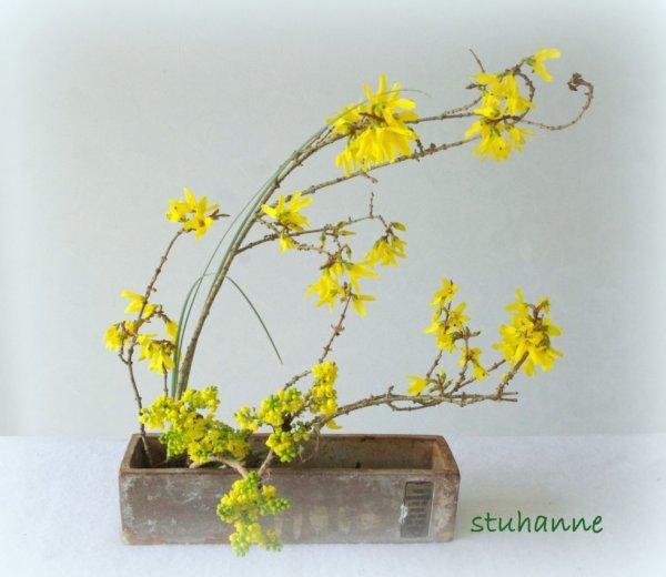 ikébana de printemps