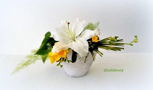 un fleuron de lys et quelques freesias.