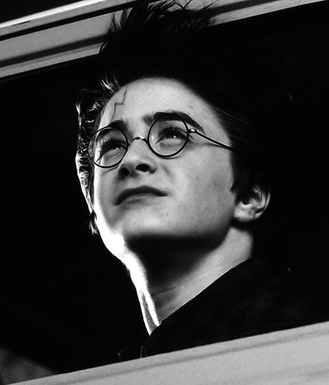 « La seule chose que Harry aimait bien dans son apparence physique, c'était la fine cicatrice qu'il portait sur le front et qui avait la forme d'un éclair. »