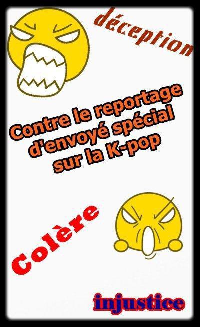 """PRENEZ L'ARTICLE, METTEZ LE SUR VOTRE BLOG ET INFORMEZ TOUT LES BLOGGEURS DE VOTRE LISTE D'AMIS....SOUTENEZ NOTRE LUTTE CONTRE CET ARTICLE IMMONDE DE LA RUBRIQUE """"ENVOYÉES SPÉCIAL"""" DE FRANCE 2 !!!!"""