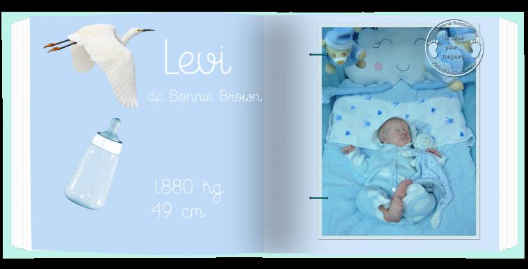 Levi #1