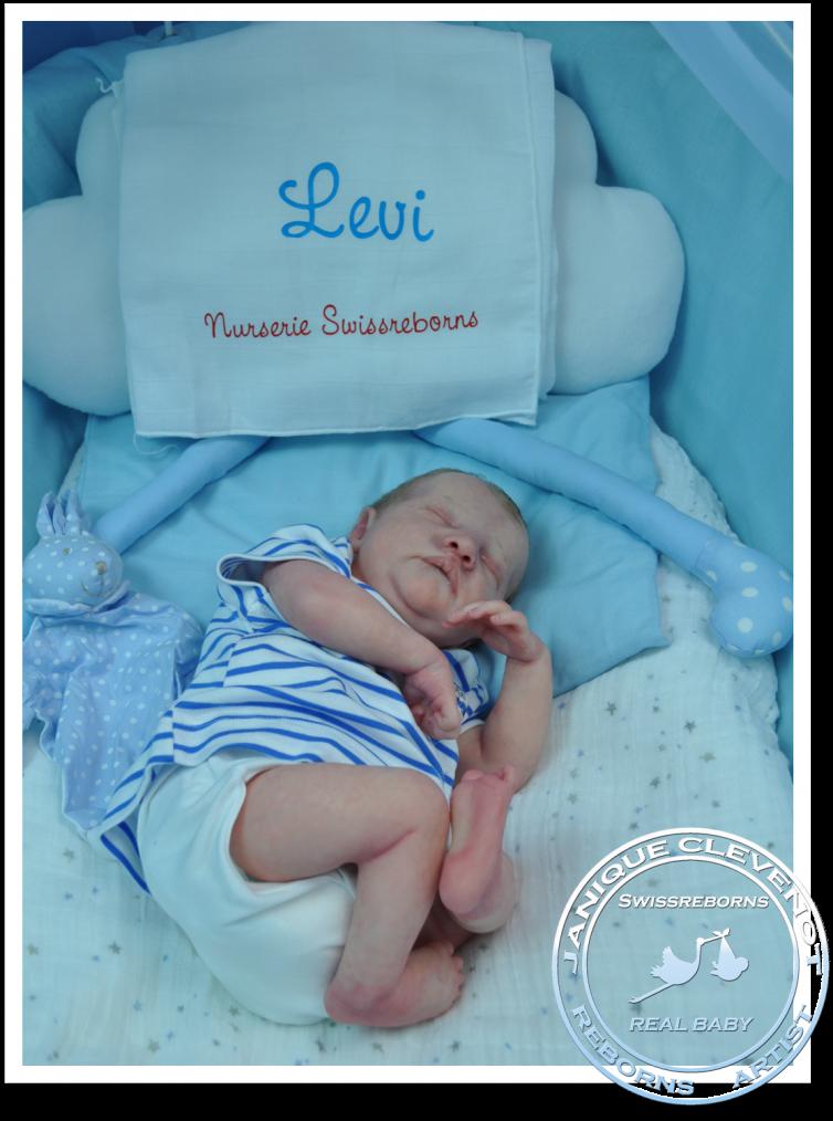 Levi #3