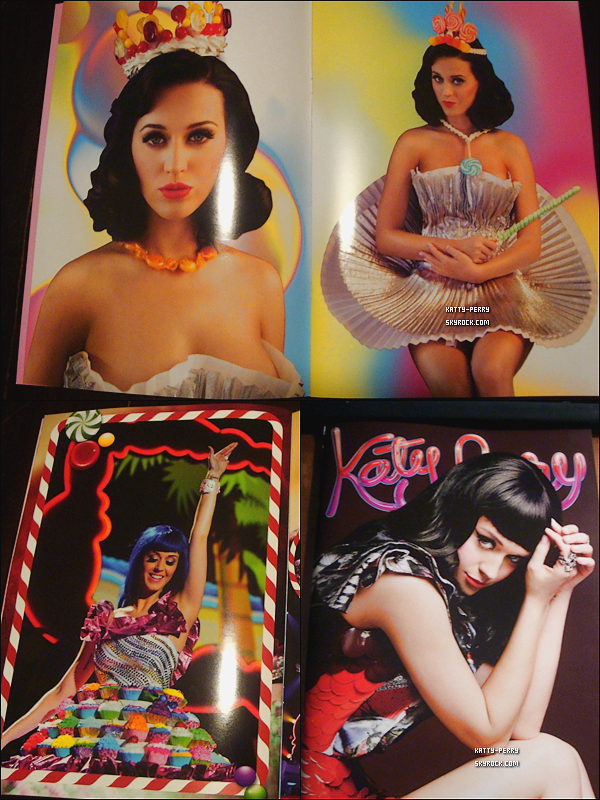 Voici des scans du CALIFORNIA DREAMS TOUR BOOK 2011.