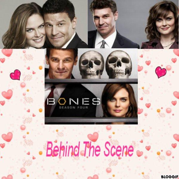 Bones: Les secrets, Les questions, les acteurs....