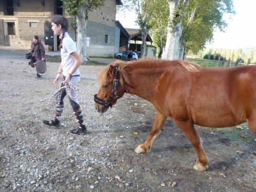 Il est facile de monter sur ses grands chevaux, mais essayez donc d'en descendre gracieusement !