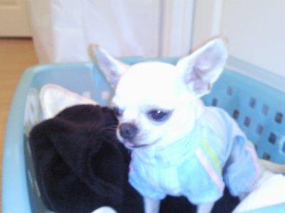 mon bébé avec son pyjama