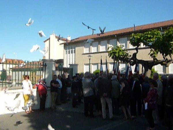 lacher de pigeons voyageurs au monument aux morts a Gerzat