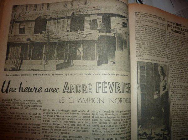 QUI A DES PIGEONS D'  ANDRE FEVRIER