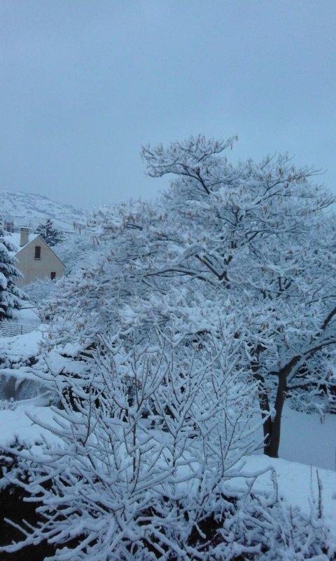 neige au martres de veyre 63 /// 8 cm