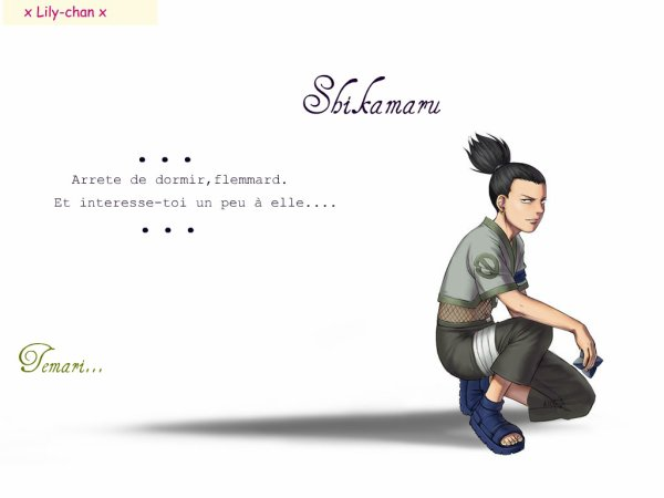 Shikamaru   ♫ Shikamaru      « Arrete de dormir,flemmard. Et interesse-toi un peu à elle....»